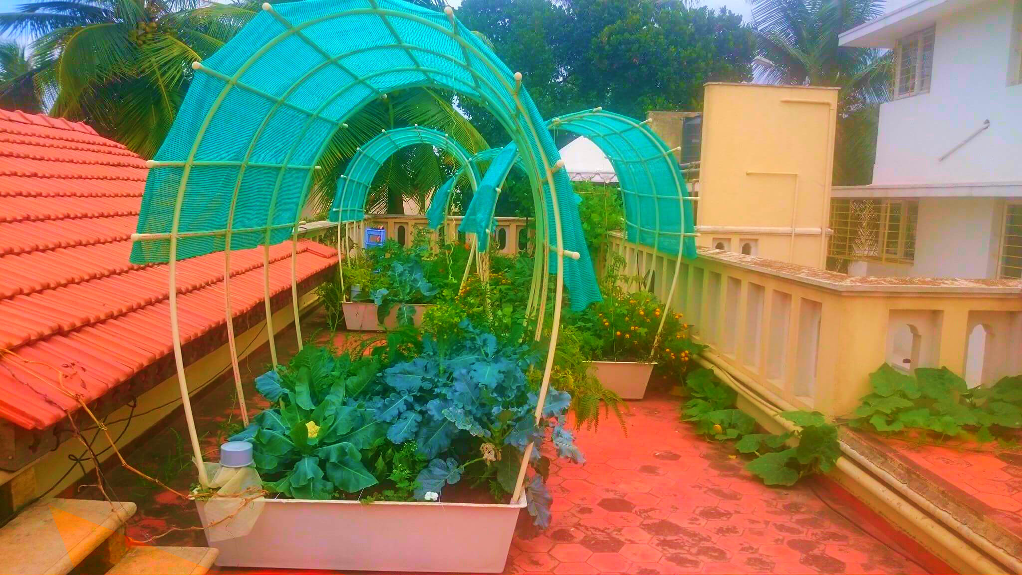 Smart Garden - Self Watering Organic Terrace Garden
